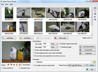 Batch Picture Resizer screenshot medium