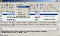 Domain Name - Analyzer & Generator