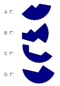 IQ Test (NASA)