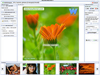 Music Video Organizer Software Pro
