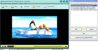 AnvSoft Web FLV Player Freeware screenshot medium