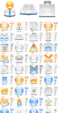 Professional icons Web 2.0 style screenshot medium