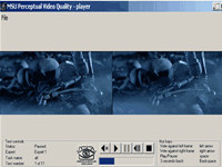 MSU Perceptual Video Quality Tool