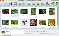 Flickr Gallery for Mac OS screenshot medium