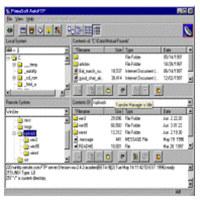 Auto FTP Professional