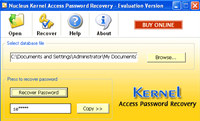Kernel Access Password Recovery Software