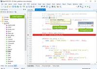 Rapid PHP 2016 screenshot medium