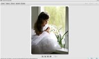 Aneesoft Free Image Editor