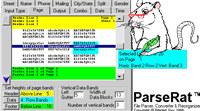 ParseRat File Parser Converter Restructurer