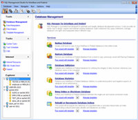 EMS SQL Management Studio for InterBase/Firebird