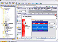 EMS SQL Manager for Oracle Freeware screenshot medium
