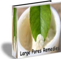 Large Pores Remedies