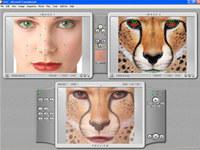Abrosoft FantaMorph Pro screenshot medium