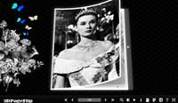 3DPageFlip Flash Catalog Templates for Pretty
