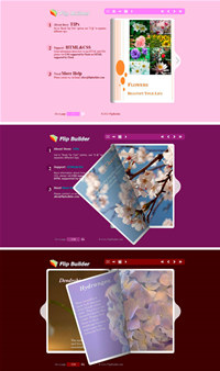Flip_Themes_Package_Conciseness_Red