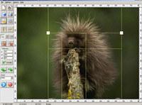Image Cut (Image Splitter)