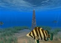 Tiger Fish Screensaver screenshot medium
