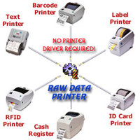 Raw Data Printer Component