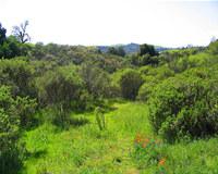 Best of Natural Landscapes Part 8