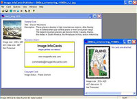 Image.InfoCards Publisher Personal Ed.
