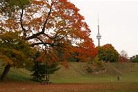Scenic Autumn Screensaver