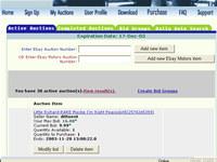 eBay Auction Sniper and Snipe Bid Tool