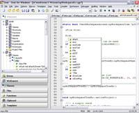 Zeus IDE screenshot medium