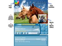 Music Organizer Freeware Ultimate