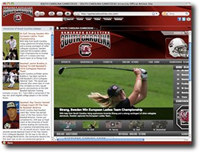 Gamecocks IE Browser Theme