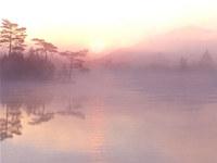 Beauty -- Path to Tao