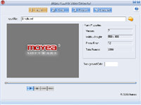 Moyea Flash to Video Converter standard