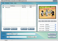 Nidesoft PSP Video Converter