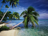 Beautiful Tropical Islands vol.1