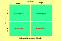 Pricing Strategies Software Tool screenshot medium