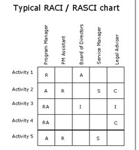RASCI, RACI, RASIS Software Tool screenshot medium