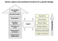 McKinsey Growth Model Pyramid Software screenshot medium