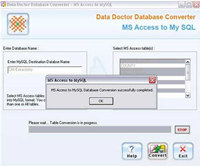 MS Access Database Converter