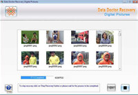 Digital Picture Recovery Tool