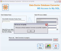 MS Access Db Converter