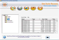Removable Media File Salvage Software