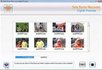 Digital Image Retrieval Software