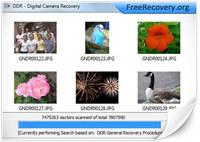Digital Camera Photo Rescue Utility