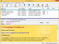 e-Campaign screenshot medium