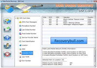 SIM Card Data Recovery Ex