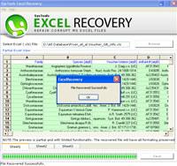 Microsoft Excel File Repair