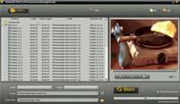 Aneesoft DVD to RM Converter screenshot medium