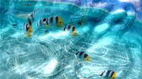 Watery Desktop 3D Screensaver screenshot medium
