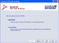 Kernel for PDF Split and Merge
