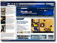 Michigan University IE Browser Theme