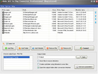 Okdo All to Png Converter Professional